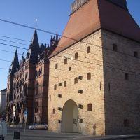 Steintor, Росток