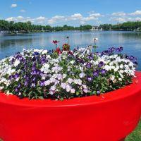 Flower Power, Шверин