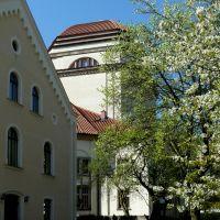 Gute Nachbarschaft, Katholisches Pfarrhaus und Synagoge, Герлиц