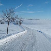 Winter (es geht auch ohne Salz), Цвикау