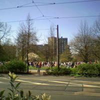 Jugendliche feiern Schulabschluß im Stadtpark, Дессау