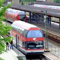 Dessau-Wörlitzer Eisenbahn, Дессау