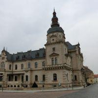 Bild (2)  Das * Ständehaus Merseburg*.  Eine  Seitenansicht  vom   > Domplatz  <  aus, Мерсебург