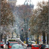Steubenstraße, Веймар