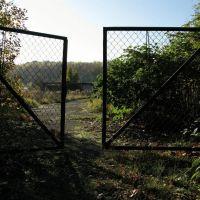 der B-Strang - 10/2008, Гота