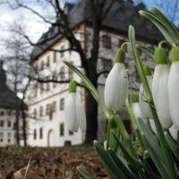 Frühling auf Schloss Friedenstein, Гота