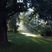 Stadtpark im Herbst, Гота