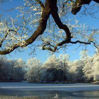 Stadtpark Gotha im Winter, Гота