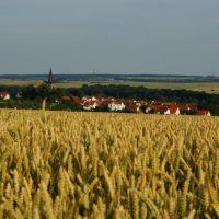 Sommerabend bei Kirchheim, Эизенах