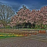 Aschaffenburg - Schöntal Park & Hofgarten, Ашхаффенбург