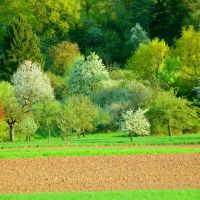 Aschaffenburg - Endlich: Der Frühling ist da!, Ашхаффенбург