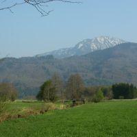 Wildmoos - Blick auf Hochfelln, Бэйреут