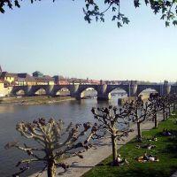 Blick auf die Alte Mainbrücke, Вюрцбург