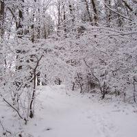Verschneite Winterlandschaft, Фурт