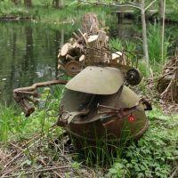 Frosch am Teich, Waldgarten, Фурт