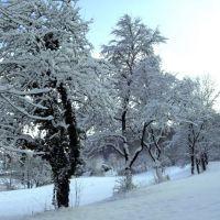 Dingolfing im Winter, Дингольфинг