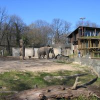 Elefantengehege im Karlsruher Zoo / Elephants enclosure in the Karlsruhe zoo, Карлсруэ