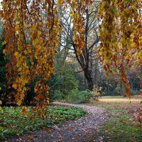 Goldener Herbst, Карлсруэ