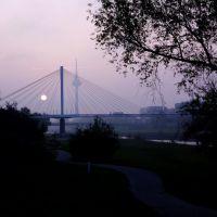 Am Neckar... (3), Мангейм