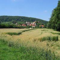 Bebenhausen: Sicht auf Bebenhausen über die Felder, Рютлинген