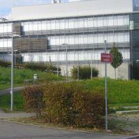 Leuchtenwald, Рютлинген