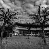 Bäume und Himmel, Фридрихсхафен
