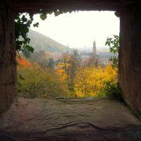 Μια κλεφτή ματια...(One pic...) - Heidelberg, Хейдельберг