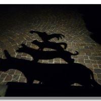 le ombre da sole !, Бремен