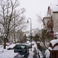 Winter, Дармштадт