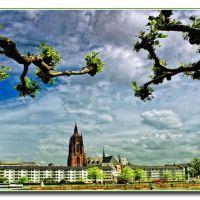 Der Dom und die Natur, Франкфурт-на-Майне