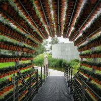 Virág alagút, Вольфсбург