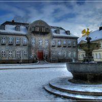 Kaiserringhaus  mit Adler,  Goslar, built 1787, Гослар