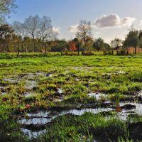 Feuchtes Land, Delmenhorst - (C) by Salinos_de NI, Дельменхорст