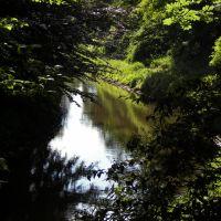Vechtearm am Stadtpark, Нордхорн