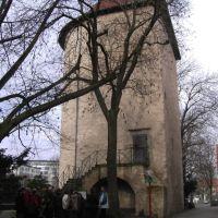 Bucksturm in Osnabrück, Оснабрюк