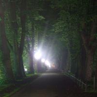 Herrenteichswall bei Nacht im Mai 2007, Оснабрюк