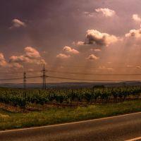 Energie im Wein, Бад-Крейцнах
