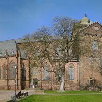 Panoramaansicht des Wormser Doms 20110325, Вормс