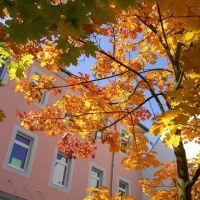 Herbst in der Stadt, Кайзерслаутерн