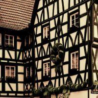 Adventsschmuck im Kirschgarten, Mainz, Майнц