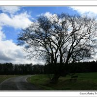 Unterwegs im Hunsrück - Raststätte auf dem Weg nach Maitzborn, Пирмасенс