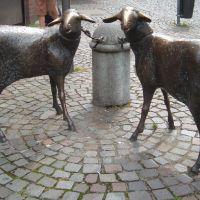 Die Schafe der Bäuerin, Бергиш-Гладбах
