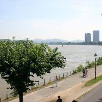 Rhine in Bonn, Бонн
