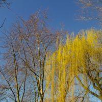 Vorfrühlingstag, Бохольт