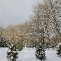 Hohenstein im Winter, Виттен