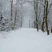 Winter im Stadtpark, Гутерсло