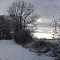 Winter 1, Детмольд