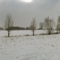 Landscape in The Snow, Детмольд