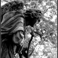 praying for..., Дюссельдорф