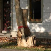 Großer Stuhl vorm Cafe Ambiente, Blick nach N, Крефельд